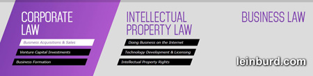 Leinburd areas of practice: Corporate law, intellectural property law, business - click to profile
